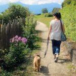 Bewegung und Spaziergang